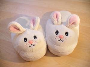 Dec15_slippers