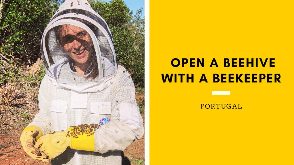 "Photo of presenter and title ""Open a Beehive with a Beekeeper"""